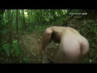 Тв передача голые и напуганные без цензуры видео онлайн — photo 8